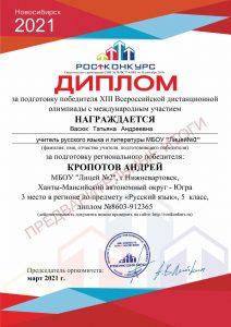 cert_Andre'_Kropotov-4