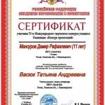 Мансуров Дамир_small
