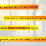 tutchev32