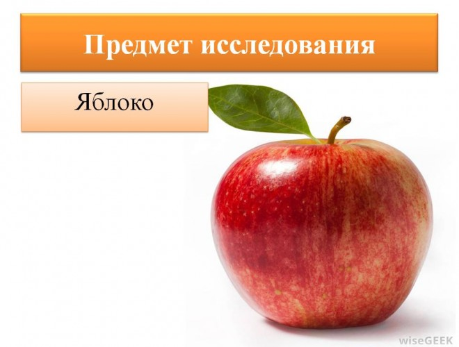 lera-davlyatova-licej-2-05