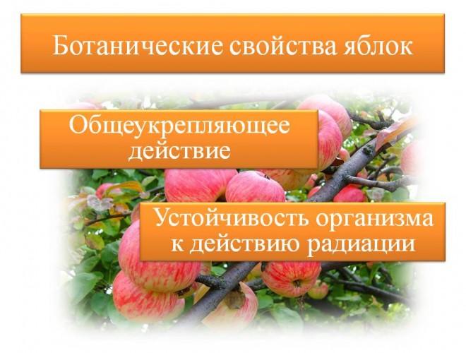 lera-davlyatova-licej-2-09