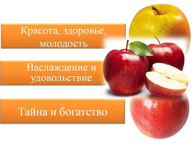 lera-davlyatova-licej-2-11