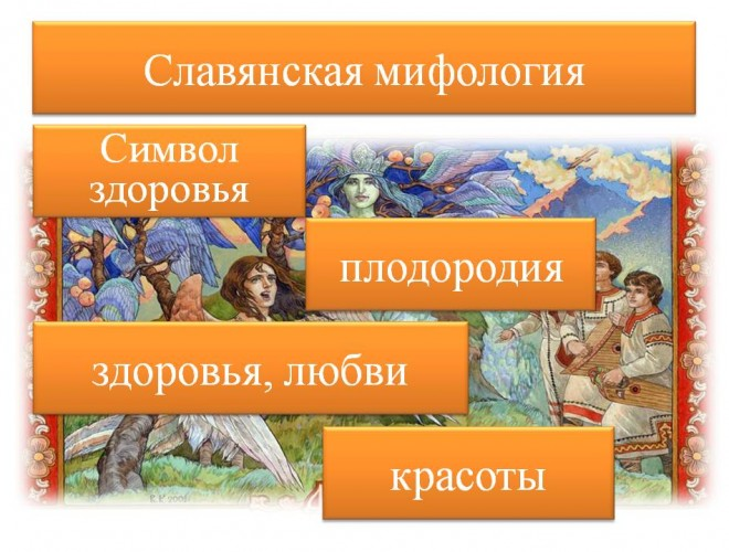 lera-davlyatova-licej-2-12