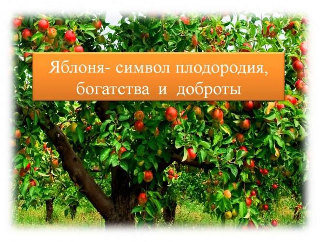 lera-davlyatova-licej-2-15