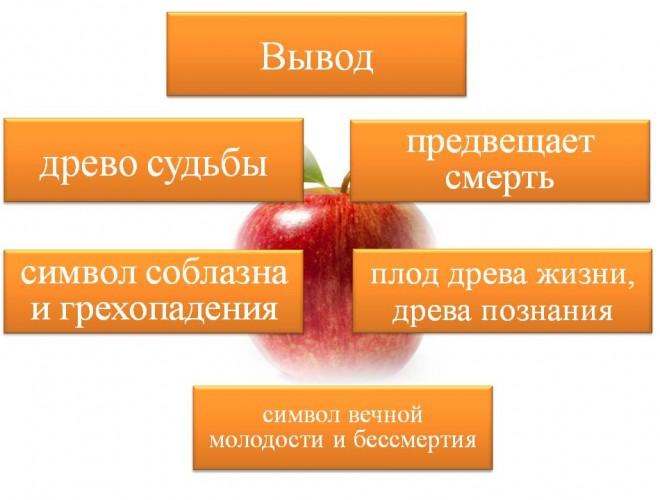 lera-davlyatova-licej-2-33