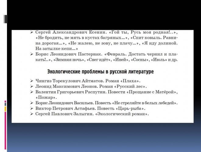 itogovoe_sochinenie_po_literature_narushevich_v_g_30