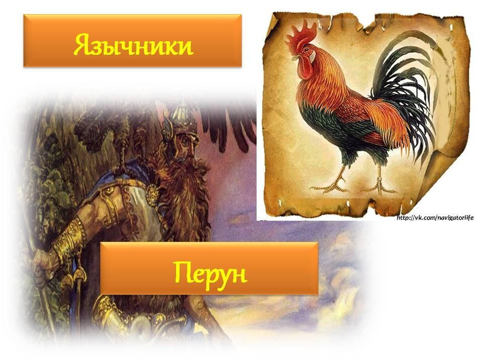 zhar-ptitsa-14
